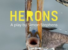 herons at LYRIC Theatre